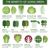 The benefits of going green vector illustration