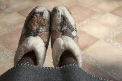 Benen in het bontlaarzen van de huiswol Stock Foto