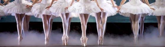 Benen van ballerina Royalty-vrije Stock Foto's