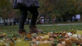 Benen van een klein meisje op het de herfstgebladerte Langzame Motie stock footage