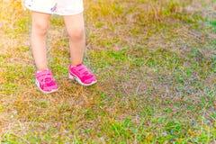 Benen van een kleine meisjestribunes op groen gras stock afbeelding