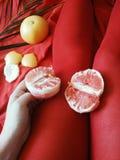 Benenmodel in rode nylonkousen op een rode achtergrond en citrusvruchten royalty-vrije stock foto's