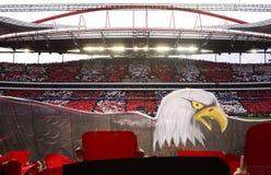 Benfica - οι αετοί, στάδιο ποδοσφαίρου, ποδοσφαιρικό παιχνίδι, αθλητισμός Στοκ Εικόνα