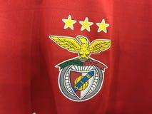 Benfica Στοκ εικόνα με δικαίωμα ελεύθερης χρήσης