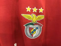 Benfica Στοκ Εικόνα