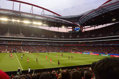 Football Stadium, Benfica Soccer Arena, Champions League Game, Real Fans Crowd stock photo