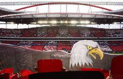 Benfica - Eagles, stadio di calcio, partita di football americano, sport Immagine Stock