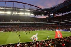 Benfica-Flaggen, Fußball-Spiel, Fußball-Stadion, trägt Menge zur Schau Stockfotos