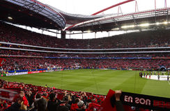Benfica Football Stadium, Champions League Soccer Game Stock Photos