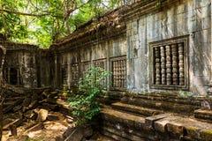 Beng Mealea,Cambodia Stock Image