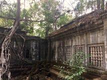 Beng Mealea吴哥寺庙,柬埔寨 库存照片