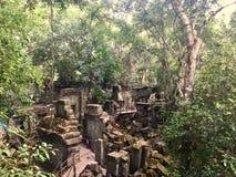 Beng Mealea吴哥寺庙,柬埔寨 库存图片