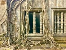 Beng Mealea -吴哥寺庙,柬埔寨 库存照片