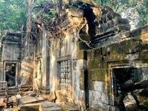Beng Mealea -吴哥寺庙,柬埔寨 免版税库存图片