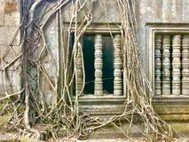 Beng Mealea Angkor Temple, Cambodge Photos stock