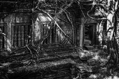 Beng Mealea, The Jungle Temple Royalty Free Stock Photo