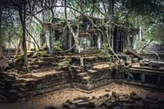 Beng Mealea-ruïnes royalty-vrije stock afbeelding