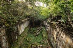 Beng Mealea-tempelwildernis in Kambodja Royalty-vrije Stock Fotografie