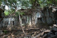 Beng Mealea Temple Stock Photos