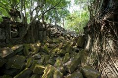 Beng Mealea Temple in Angkor Stock Photo