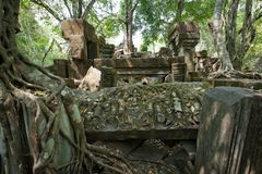Beng Mealea Temple in Angkor Stock Images