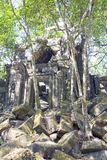 Beng Mealea temple  ruin in the Koh Ker complex, Siem Reap, Cambodia. Beng Mealea temple ruin in the Koh Ker complex, Siem Reap, Cambodia Royalty Free Stock Photos