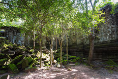 Beng Mealea temple ruins. In Angkor, Cambodia, The temple largely unrestored and is utterly consumed by jungle Stock Photo