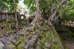 Beng Mealea temple ruins. In Angkor, Cambodia, The temple largely unrestored and is utterly consumed by jungle Stock Photography