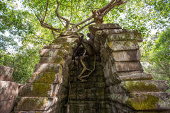 Beng Mealea temple ruins. In Angkor, Cambodia, The temple largely unrestored and is utterly consumed by jungle Stock Image