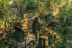 Beng Mealea temple ruins surrounded by jungle near Siem Reap, Ca Royalty Free Stock Photo