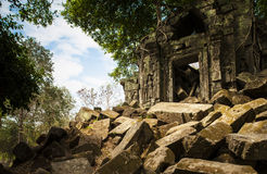 Beng Mealea. The untamed temple Royalty Free Stock Photography