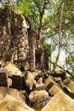Beng Melea Temple in Kambodscha Lizenzfreie Stockbilder