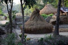 Bengaals dorp royalty-vrije stock foto's