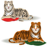 Bengal and Amur tiger. In  format Royalty Free Stock Photography