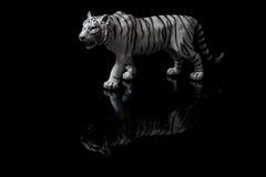 bengal biały tygrys Obraz Royalty Free