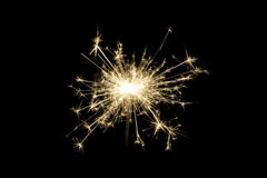 bengal black isolated light Στοκ φωτογραφίες με δικαίωμα ελεύθερης χρήσης
