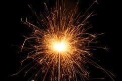 bengal brand Fotografering för Bildbyråer