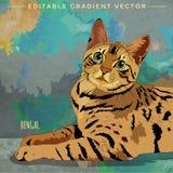 Bengal Cat Illustration stock illustration