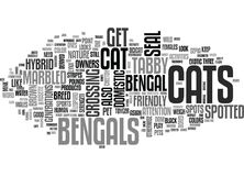 Bengal Catword Cloud Stock Images