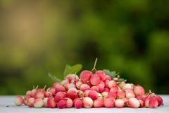 Bengal-Currants, Carandas-plum, Karanda Stock Photos