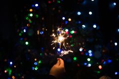 Bengal fire burns near the Christmas tree. Bengal fire in the hand burns near the tree. X-mas hollyday Royalty Free Stock Photo