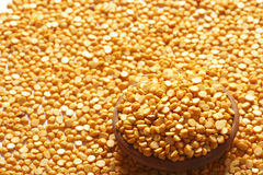 Bengal Gram. The chickpea (Cicer arietinum) (also garbanzo bean, Indian pea, ceci bean, , Kabuli chana, kadale kaalu, sanaga pappu, shimbra, Kadala) is an Stock Image