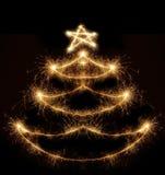 bengal jodły światło zrobił drzewa Zdjęcie Royalty Free