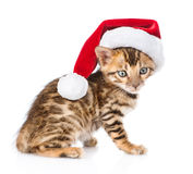 Bengal kitten with red santa hat. isolated on white background Royalty Free Stock Photos