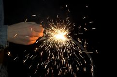 Bengal-Leuchte stockfotografie