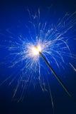 bengal ogień Fotografia Royalty Free