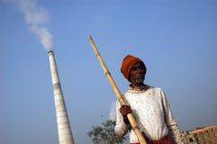 bengal tegelstenfält västra india Arkivfoto