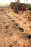 bengal tegelstenfält västra india royaltyfri fotografi