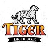Bengal Tiger Beer logo vector. Lager Label design template. Predator insignia, Sport team logotype on light background. Stock Photo