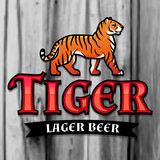 Bengal Tiger Beer logo vector. Lager Label design template. Predator insignia, Sport team logotype on wood texture. Background Stock Photography